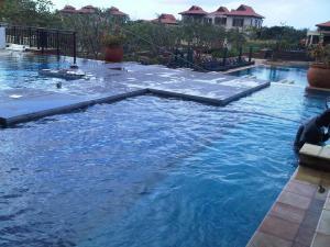 pool set up2